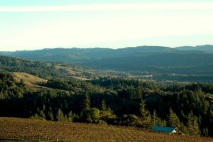 View from Esterlina Winery of the California wine region of the Anderson Valley